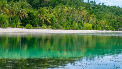 Water Hut of an Homestay on Monsuar Island. Low Tide. Raja Ampat, Indonesia, West Papua