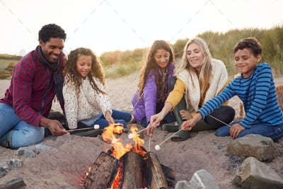 Multi-Cultural Toasting Marshmallows Around Fire On Winter Beach Vacation