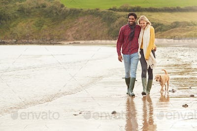 Loving Couple With Pet Dog Hugging Walking Along Beach Shoreline