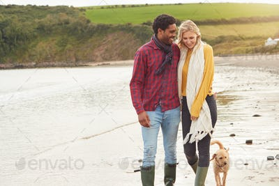 Loving Couple With Pet Dog Holding Hands Walking Along Beach Shoreline