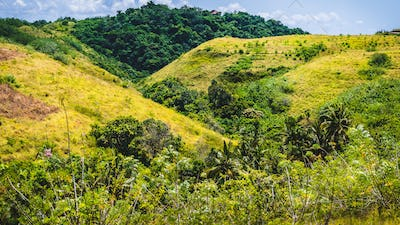 Yellow Hills with some Jungle between, Nusa Penida Island, Bali, Indonesia