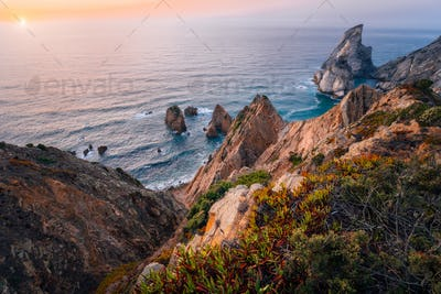 Praia da Ursa Beach at golden burn sunset. Flowers in foreground and surreal scenery. Sintra
