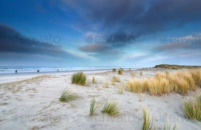 view on big beach on Schiermonnikoog