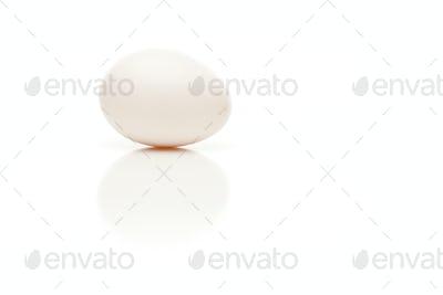 Single Egg on White Background