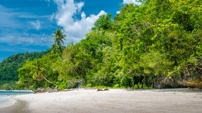 Bamboo Huts on the Beach, Coral Reef of an Homestay Gam Island, West Papuan, Raja Ampat, Indonesia