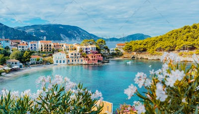 Panoramic view to Assos village in Kefalonia, Greece. Bright white blossom flower in foreground of