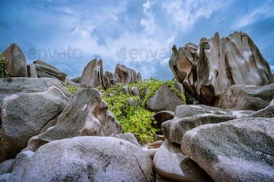 Bizarrely shaped granite boulders neat the beach, La Digue island, Seychelles