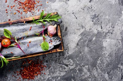 Raw salmon and ingredients