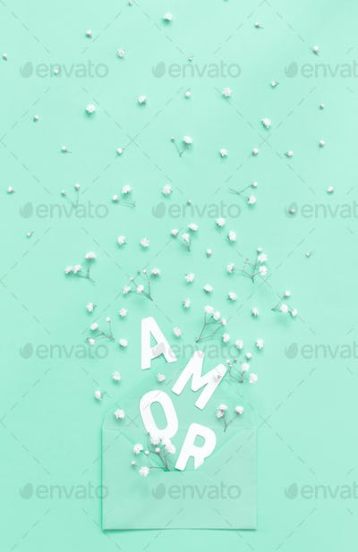 Flowers, envelope and text AMOR on a light green background