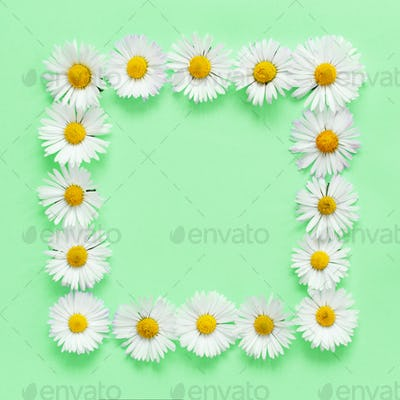 Rectangular floral frame on a light green background