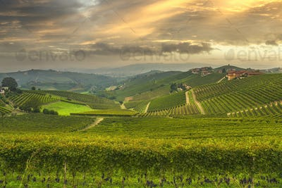 Langhe panorama, Barbaresco vineyards view at sunset, Piedmont, Italy Europe.