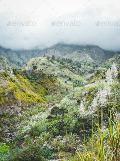 Landscape of vegetation and mountains and some local dwellings of the Paul Valley. Cultivated