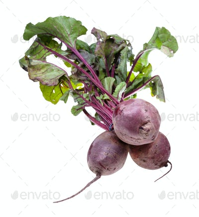 bunch of fresh organic garden beet roots isolated