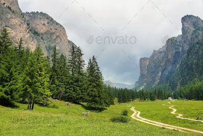 Scenic Mountains in Puez-odle nature park in the dolomites, Italy