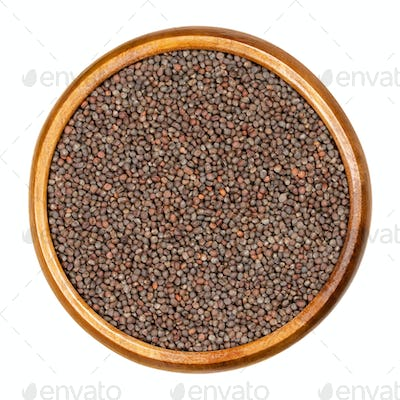 Red cabbage seeds in wooden bowl