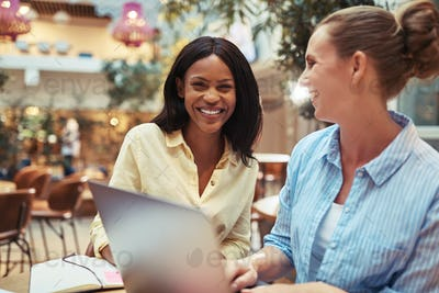 Two smiling businesswomen working on a laptop together