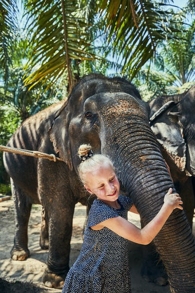 Smiling little girl hugging the trunk of an Asian elephant