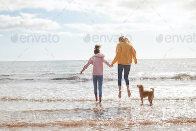 Mother And Daughter Playing With Pet Dog In Waves On Beach Vacation