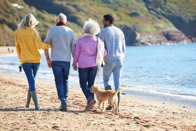 Rear View Of Senior Couple Walking Along Shoreline With Adult Offspring And Dog On Winter Beach