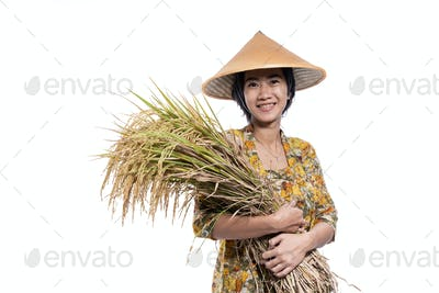 asian beautiful farmer holding rice grain isolated over white