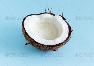 Coconut piece on a light blue background