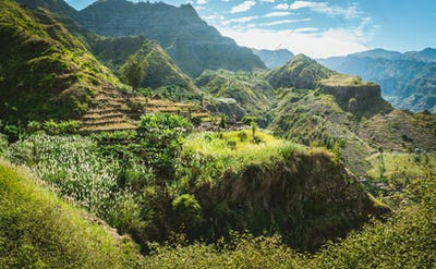 Amazing view of high mountains covered with lush green vegetation. Picturesque banana and sugarcane
