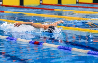 butterfly stroke competition