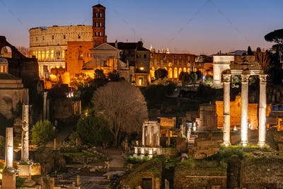 View over the ruins of the Roman Forum