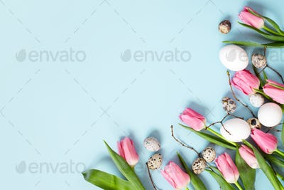 Easter Blue Background with Pink Tulips