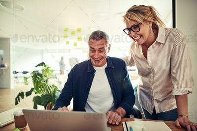 Smiling mature businesspeople discussing work together at an office desk