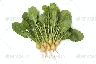 Fresh yellow baby turnips
