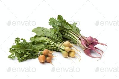 Fresh variety of baby vegetables