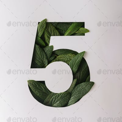 Number five shape cutout with green leaves. Nature concept. Flat lay.