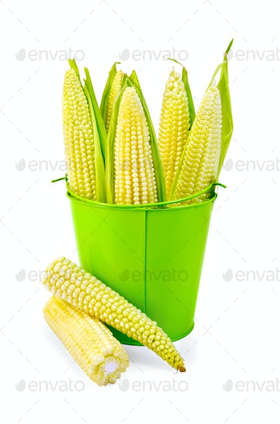 Corn on the cob in a green bucket
