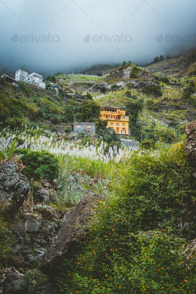 Local dwellings built on the mountain cliffs, surrounded by cultivated vegetation. Paul Valley