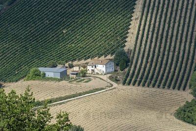 Rural landscape near Ripatransone, Marches, Italy