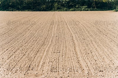 Ploughed field under a blue sky. A wide angle shot of a ploughed, tree-lined field.