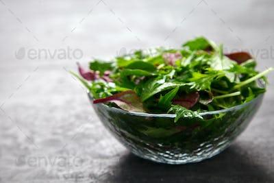 Fresh Green Mix Salad