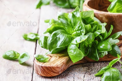 Fresh green basil in olive mortar with pestle