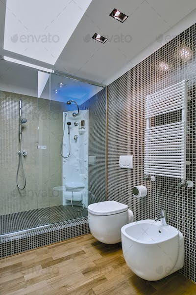 Interiors Shots of the Bathroom in a Modern Apartment
