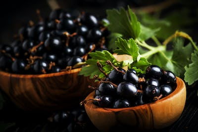 Fresh black currants in wooden bowls