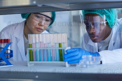 Scientists Looking At Test-Tubes