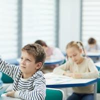 Caucasian Boy Raising Hand In Class