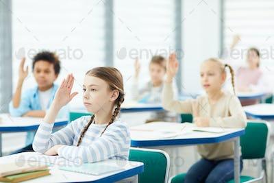 Students Raising Hands In Class