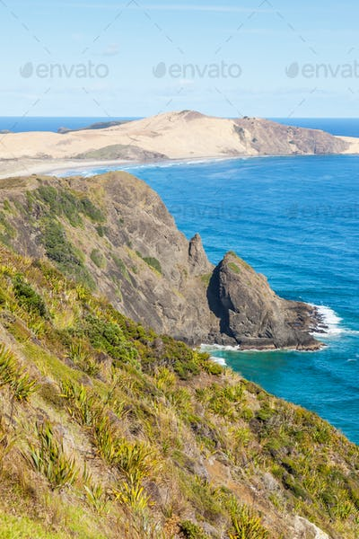 Te Werahi Beach in New Zealand