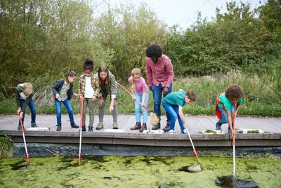 Adult Team Leaders Show Group Of Children On Outdoor Activity Camp How To Catch And Study Pond Life