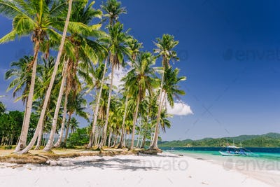 Vacation holiday feeling. Palawan most famous touristic spots. Palm trees and lonely island hopping