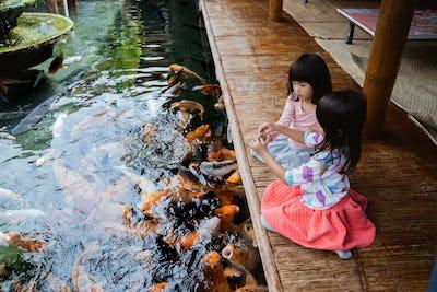 two little girls having fun feeding koi fish