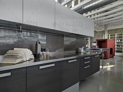 IInterior of the Kitchen in a Modern Industrial Style Penthouse