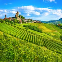Langhe vineyards sunset panorama, Serralunga Alba, Piedmont, Italy Europe.